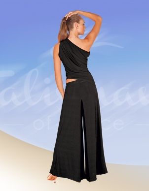 Talisman model 303 pants for practice